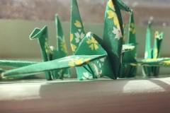 paper-cranes_t20_lRjPbb